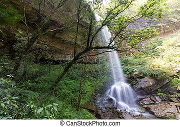 Subtropical wild waterfall in Taiwan