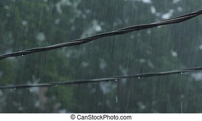 Suburban wires during heavy rain.