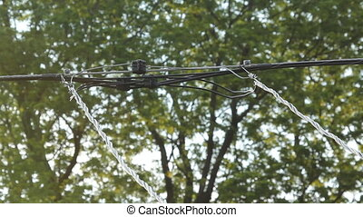 Suburban wires. - Residential electrical wires with trees in...