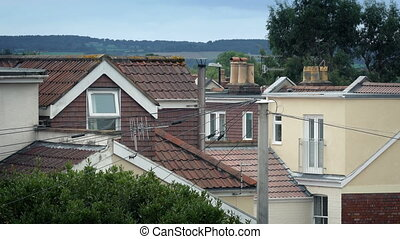 Suburbs With Trees Moving In Breeze - Typical urban scene of...