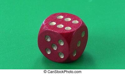 success concept. ladybug on dice