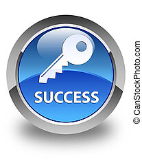 Success (key icon) glossy blue round button