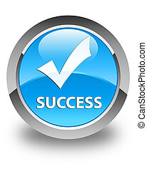 Success (validate icon) glossy cyan blue round button