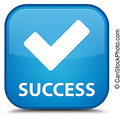 Success (validate icon) special cyan blue square button