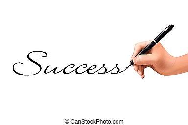 success word written by 3d hand