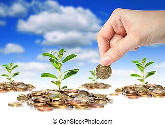 Successful business investments. - Plants, coins and hand ...
