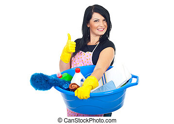 Successful cleaning woman - Woman holding a basin with brush...