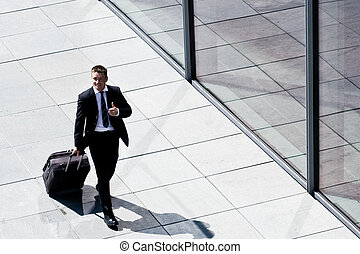 Successful Corporate Man With Luggage