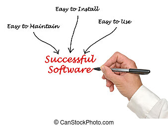 Successful Software