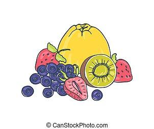 succoso, saporito, taglio, mela, -, isolato, disegnato, bianco, kiwi, colorito, mano, fondo, mirtilli, cibo., illustration., sano, insieme, vettore, strawberries., frutte, fresco, bacche, intero, dire bugie
