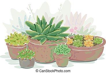 Succulent Container Garden Illustration