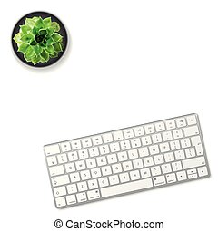 succulent, fleur, isolé, arrière-plan., clavier ordinateur, blanc