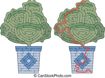 Succulent maze for kids with a solution
