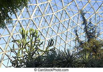 Succulents and Cactus at Domes