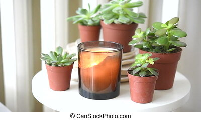 Succulents and candles, cozy white scandinavian home...