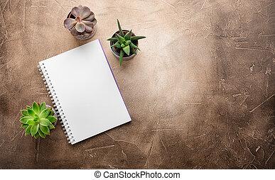 succulents, geschaeftswelt, concept., notizblock, space., ansicht., kopie, tisch., oberseite