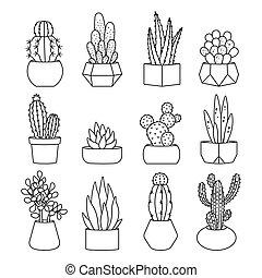 succulents, styl, komplet, wektor, kreska, kaktus