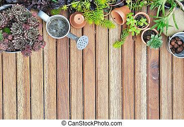 succulents, terrazzo