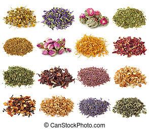 suchy, herbata