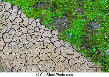 suchy, ziemia, gruntowy, tło, kopnięty mielony