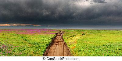 sucio, camino, en, florecer, campo