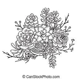 suculento, plants., dibujado, composición, mano