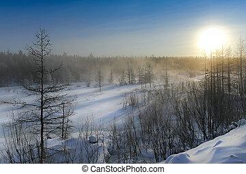 sud, alba, yakutia, paesaggio inverno