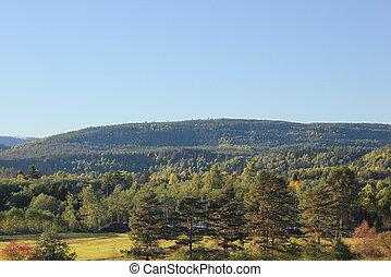 sueco, colina