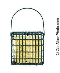 Suet in bird feeder