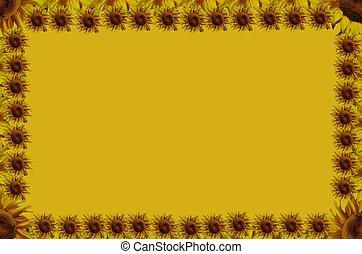 Suflowers frame