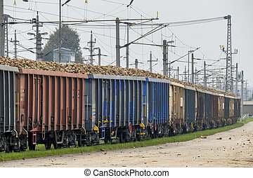 sugar beet and freight train, symbol of harvest, logistics,...