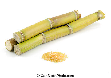 Sugar cane and brown sugar in isolated white background