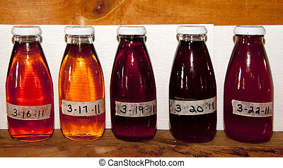 Sugar Maple Syrup Samples - Various grades of maple syrup...