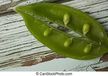 Sugar snap peas - Open sugar snap pea pod on a rustic and ...