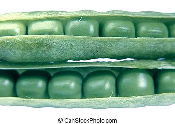 Sugar Snap Peas - Snap peas, Pisum sativum var. macrocarpon ...