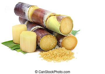Sugarcane and brown sugar.