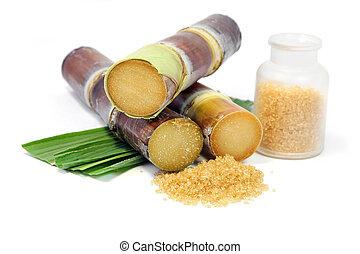 Sugarcane and granulate sugar.