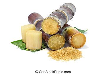 Sugarcane and sugar.