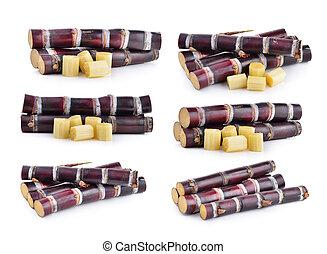 sugarcane on white background