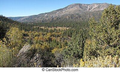 Sugarloaf View - View of Sugarloaf Peak, San Bernardino ...
