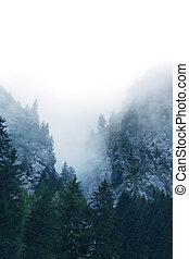 suisse, brouillard, alpes