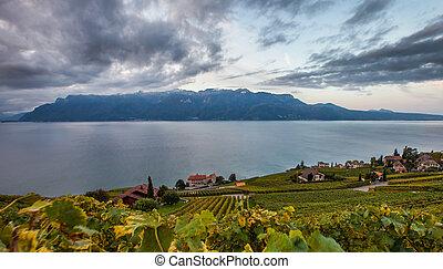 suisse, vignoble