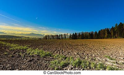 suiza, campos, arado
