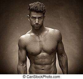 sujeito, torso, muscular, bonito