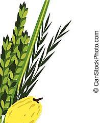 sukkot., feriado, arava, sauce, judío, lulav, hadas., cuatro, cidra, símbolos, palma fecha, mirto, especie