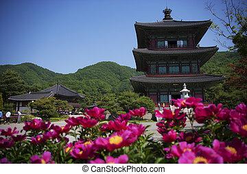 sul, botapsa, templos, coréia