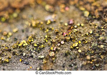 sulphide, (fes2), marcasite, orthorhombic, cristal, ferro, ...