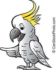 Sulphur Crested Cockatoo - Hand-drawn Vector illustration of...