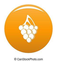 Sultana grape icon orange