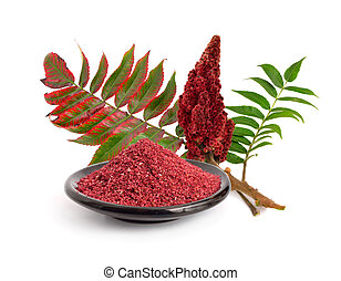 Sumac spice with branch isolated on white background.